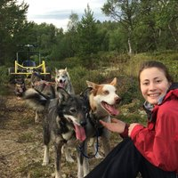 summer activities husky cart and hiking